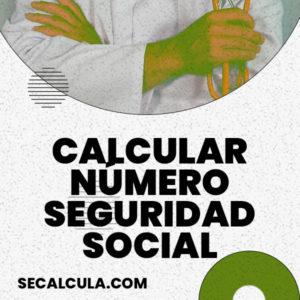Calcular numero seguridad social