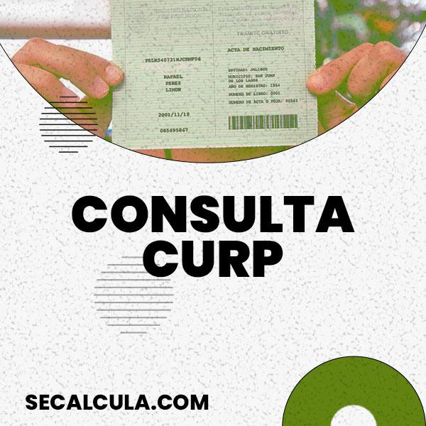 Consulta CURP Gratis solo con tus Datos Personales Online